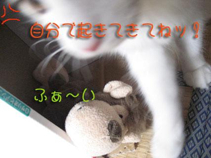 06.10.03.13.jpg