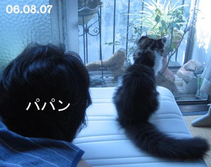 06.11.30.02.jpg