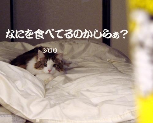 07.02.11.10.jpg